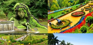 beautiful-gardens-of-india